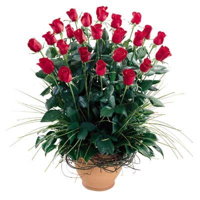 Tunceli çiçek siparişi sitesi  10 adet kirmizi gül cam yada mika vazo