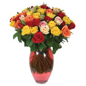 51 adet gül ve kaliteli vazo   Tunceli çiçek servisi , çiçekçi adresleri