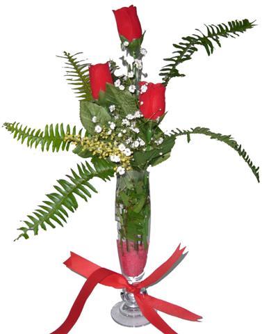 Tunceli güvenli kaliteli hızlı çiçek  3 adet kirmizi gül ve cam tanzim
