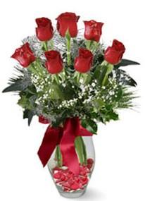 Tunceli çiçek satışı  7 adet kirmizi gül cam vazo yada mika vazoda