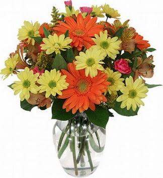 Tunceli internetten çiçek siparişi  vazo içerisinde karışık mevsim çiçekleri