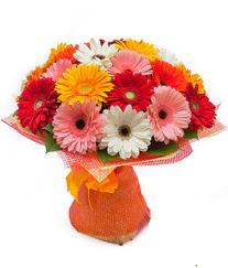 Renkli gerbera buketi  Tunceli çiçekçiler