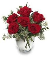 Vazo içerisinde 5 adet kırmızı gül  Tunceli çiçek gönderme sitemiz güvenlidir