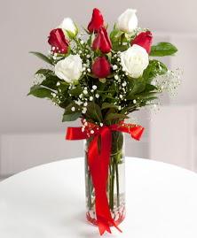 5 kırmızı 4 beyaz gül vazoda  Tunceli çiçekçi mağazası