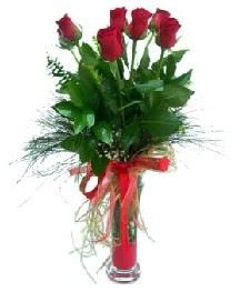 vazo içerisinde 5 kırmızı gül  Tunceli uluslararası çiçek gönderme