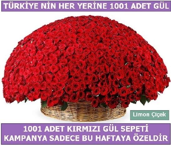 1001 Adet kırmızı gül Bu haftaya özel  Tunceli çiçek online çiçek siparişi