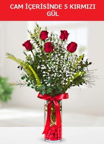 Cam içerisinde 5 adet kırmızı gül  Tunceli çiçek yolla