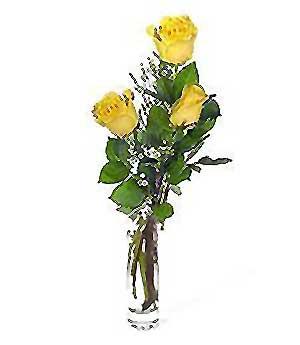 Tunceli çiçek satışı  3 adet kalite cam yada mika vazo gül