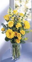 Tunceli ucuz çiçek gönder  sari güller ve gerbera cam yada mika vazo