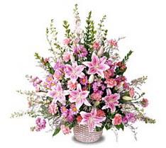 Tunceli çiçek yolla  Tanzim mevsim çiçeklerinden çiçek modeli