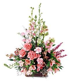 Tunceli çiçek yolla , çiçek gönder , çiçekçi   mevsim çiçeklerinden özel