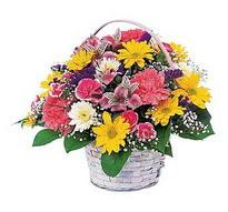 Tunceli online çiçekçi , çiçek siparişi  mevsim çiçekleri sepeti özel