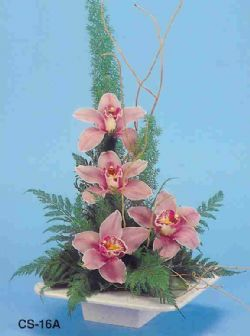 Tunceli güvenli kaliteli hızlı çiçek  vazoda 4 adet orkide