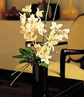 Tunceli çiçekçi telefonları  cam yada mika vazo içerisinde dal orkide
