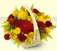 Tunceli internetten çiçek satışı  sepette mevsim çiçekleri
