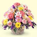 Tunceli çiçek siparişi sitesi  sepet içerisinde gül ve mevsim