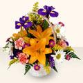 Tunceli internetten çiçek satışı  sepet içinde karisik çiçekler