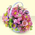 Tunceli 14 şubat sevgililer günü çiçek  bir sepet dolusu kir çiçegi  Tunceli çiçek servisi , çiçekçi adresleri