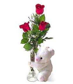 oyuncak ve 3 adet gül  Tunceli çiçek yolla