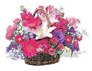 küçük karisik özel sepet   Tunceli çiçek siparişi vermek