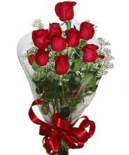 9 adet kaliteli kirmizi gül   Tunceli anneler günü çiçek yolla