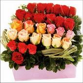 15 adet renkli gül ve cam   Tunceli çiçek gönderme sitemiz güvenlidir