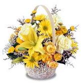 sadece sari çiçek sepeti   Tunceli çiçek servisi , çiçekçi adresleri