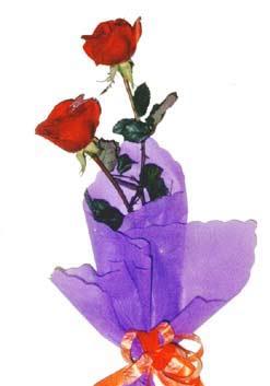 2  adet kirmizi gül buketi   Tunceli online çiçekçi , çiçek siparişi