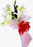 Tunceli online çiçekçi , çiçek siparişi  ince vazoda gerbera ve ayi