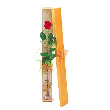 ince  kutuda  1  gül   Tunceli çiçek mağazası , çiçekçi adresleri