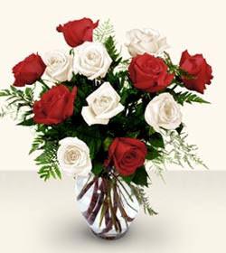 Tunceli çiçek siparişi sitesi  6 adet kirmizi 6 adet beyaz gül cam içerisinde