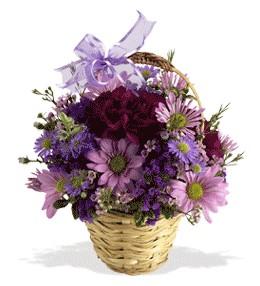 Tunceli çiçek siparişi sitesi  sepet içerisinde krizantem çiçekleri
