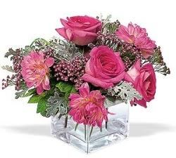 Tunceli çiçekçi mağazası  cam içerisinde 5 gül 7 gerbera çiçegi