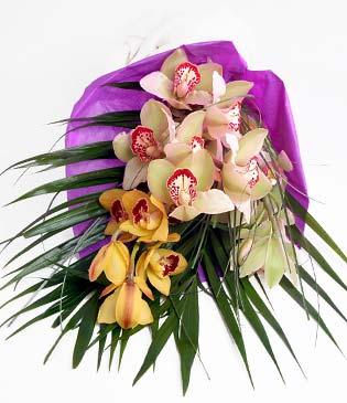 Tunceli çiçekçi mağazası  1 adet dal orkide buket halinde sunulmakta