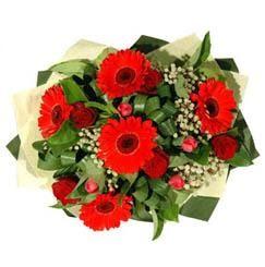 Tunceli çiçek yolla , çiçek gönder , çiçekçi    5 adet kirmizi gül 5 adet gerbera demeti