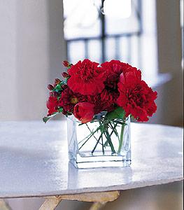 Tunceli çiçek yolla , çiçek gönder , çiçekçi   kirmizinin sihri cam içinde görsel sade çiçekler