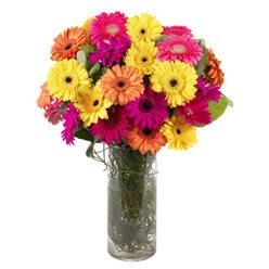 KARISIK GERBERALARDAN CAM VAZO TANZIMI  Tunceli uluslararası çiçek gönderme