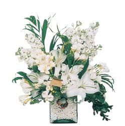 Tunceli çiçek satışı  sadece beyazlardan olusmus mevsim cam yada mika tanzim
