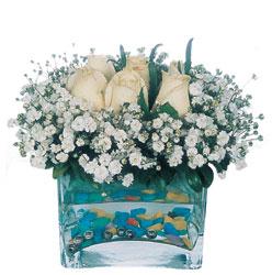 Tunceli çiçek gönderme sitemiz güvenlidir  mika yada cam içerisinde 7 adet beyaz gül