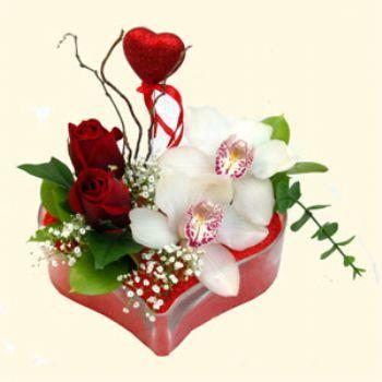 Tunceli internetten çiçek siparişi  1 kandil orkide 5 adet kirmizi gül mika kalp