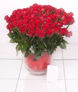 Tunceli hediye çiçek yolla  101 adet kirmizi gül