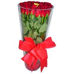 Tunceli çiçek siparişi vermek  12 adet kirmizi gül cam yada mika vazo tanzim