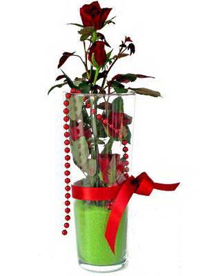Tunceli ucuz çiçek gönder  Cam yada mika içerisinde 9 adet kirmizi gül - sevdiklerinize özel
