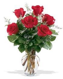 Tunceli çiçek servisi , çiçekçi adresleri  7 adet kirmizi gül cam yada mika vazoda sevenlere