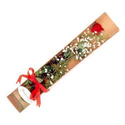 Tunceli online çiçekçi , çiçek siparişi  Kutuda tek 1 adet kirmizi gül çiçegi