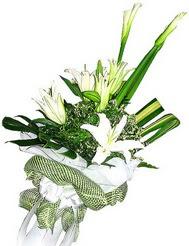 Tunceli uluslararası çiçek gönderme  3 dal kazablanka çiçegi ve yesillikler