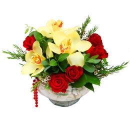 Tunceli kaliteli taze ve ucuz çiçekler  1 kandil kazablanka ve 5 adet kirmizi gül
