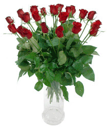 Tunceli güvenli kaliteli hızlı çiçek  11 adet kimizi gülün ihtisami cam yada mika vazo modeli