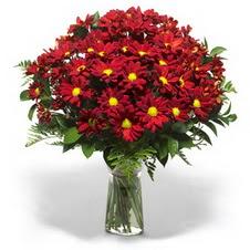 Tunceli çiçek mağazası , çiçekçi adresleri  Kir çiçekleri cam yada mika vazo içinde