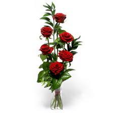 Tunceli çiçek siparişi sitesi  mika yada cam vazoda 6 adet essiz gül